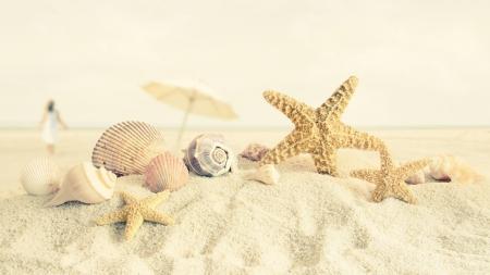在海滩的夏日海滩壁纸1173314