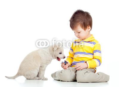 与小狗玩耍的可爱的孩子(cute