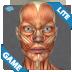 肌肉解剖 休閒 App LOGO-APP試玩