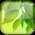 叶子动态壁纸 個人化 App LOGO-硬是要APP