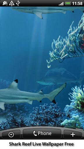 动态鲨鱼礁墙纸
