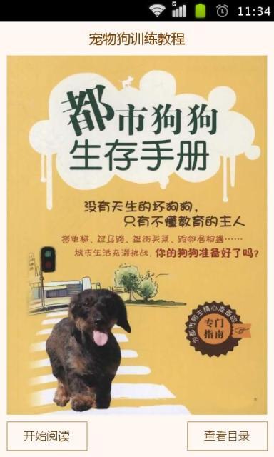 宠物狗训练教程
