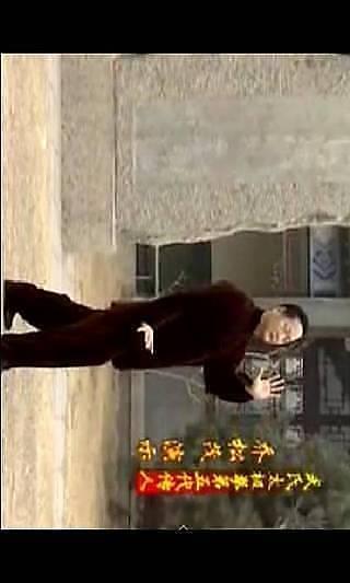 太极拳全套视频教程 高清版